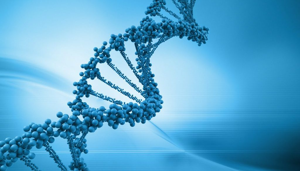 DNA-Strand