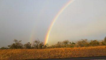 rainbows_end